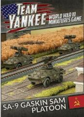 SA-9 Gaskin SAM Platoon