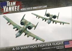 A-10 Warthog Fighter Flight