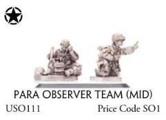 Para Observer Team (Mid)
