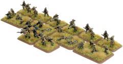 Weapons & Anti-Tank Platoons