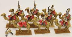British Camel Cavalry #2