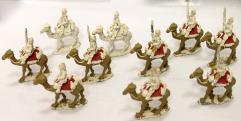 British Camel Cavalry #3