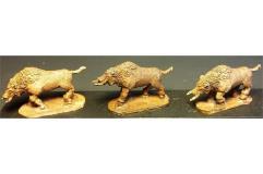 Dwarian War Boars
