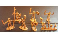 Decian Swordsmen w/Shields