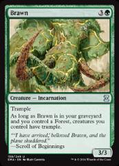 Brawn (U) (Foil)