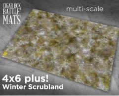 Winter Scrubland