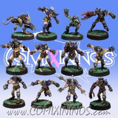 Kaos Pact Team of 12 Players