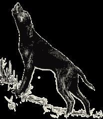 Bestiary Article - Dogs