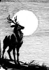 Bestiary Article - Deer