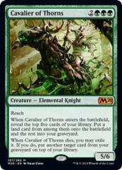 Cavalier of Thorns (MR)