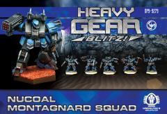 Montagnard Squad