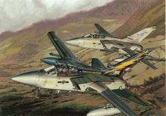 """RAF Tornado F.3 No.111 Squadron """"90th Anniversary"""""""