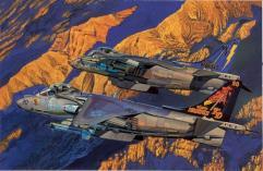 """USMC AV-8B - VMAT-203 """"Hawks"""" & VMA-513 """"Flying Nightmares"""""""