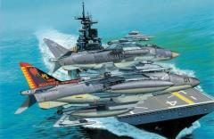 "USMC AV-8B Harrier II Plus - VMA-311 ""Tomcat"" & VMM-162 ""Golden Eagles"""