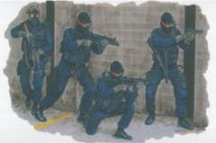 Los Angeles Police SWAT Team