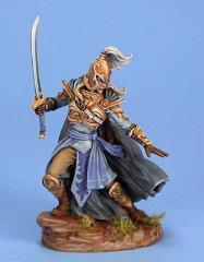 Male High Elf Warrior