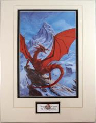 Dragons of Krynn (Matted)