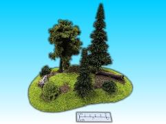 Forested Hill