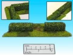 Hedge w/Door