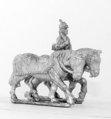 2 Prussian Limber Horses & Driver