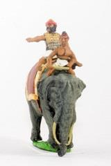 General & Driver Mounted on Elephant