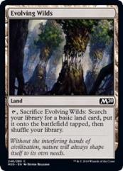 Evolving Wilds (C)