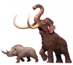 Prehistoric Mammoth & Rhino