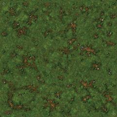 Playmat - Grassy Field