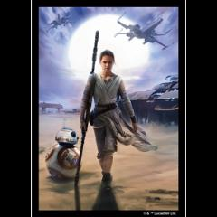 Card Sleeves - Standard CCG Size, Rey (50)