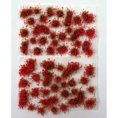 Flowers - Shrub - Red