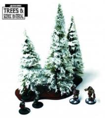 Winter Fir Trees - Mature