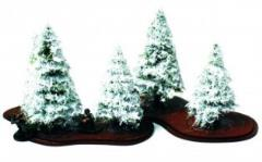 Winter Fir Trees - Young