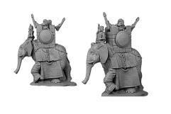 Elephants - Numidian