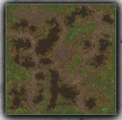 4 x 4' - Swamp