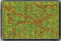 6 x 4' - Grassy Plains