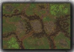 6 x 4' - Swamp