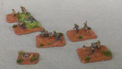 VC/NLF Sapper Platoon