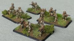Rifle Platoon