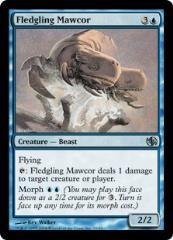 Fledgling Mawcor (U)
