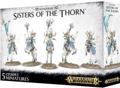 Sisters of the Thorn (2017 Edition)