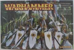 High Elf Warriors Regiment (2001 Edition)