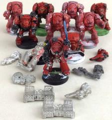 Blood Angel Terminator Collection #2
