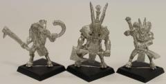 Beastmen Command #1