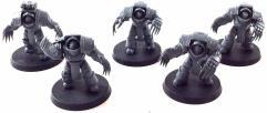 Cataphractii Terminators #2