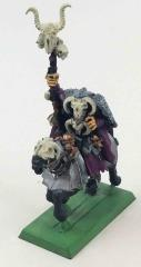 Mounted Chaos Sorcerer #3