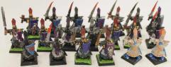 Dark Elf Warriors Collection #7