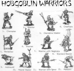 Ally Morrison's Hobgoblin Warriors