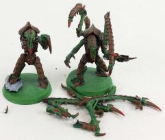 Lictor Collection #6