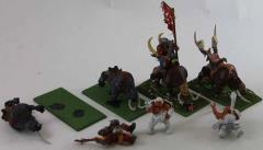 Mournfang Cavalry Collection #1