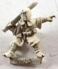 Ninja #2